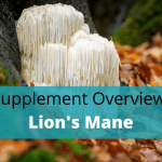 Lion's Mane Benefits, Side Effects, Dosage And Stacking