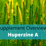Huperzine-A Benefits, Side Effects, Dosage And Stacking