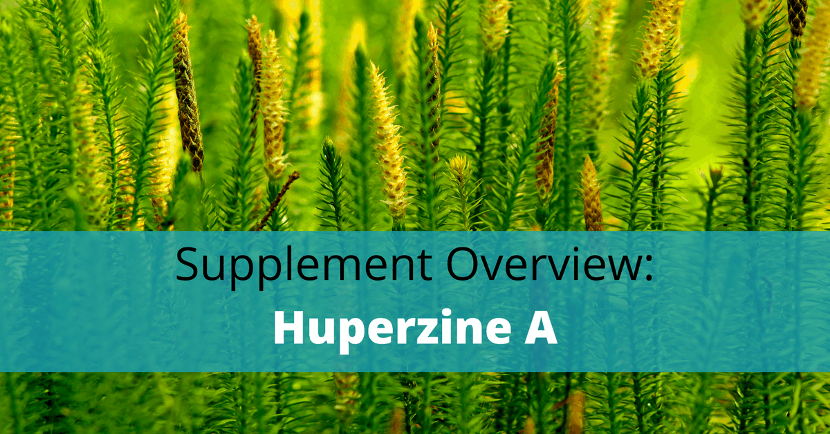 Huperzine A Benefits Side Effects Dosage And Stacking Learn
